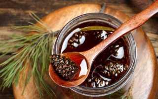 Варенье из шишек сосны: польза и вред для здоровья