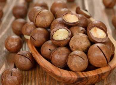 Орех макадамия: польза и вред для здоровья