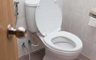 К чему снится туалет: трактуем значение сна