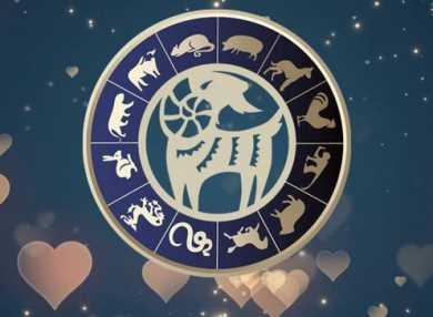 Мужчина Коза и женщина Коза: совместимость в любви и браке, а также сочетаемость с другими знаками