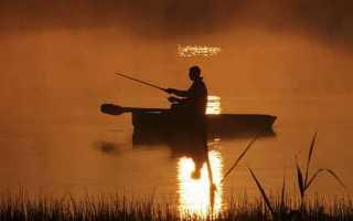 К чему снится рыбалка: трактуем значение сна