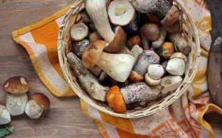 Грибы: калорийность и БЖУ всех способов приготовления