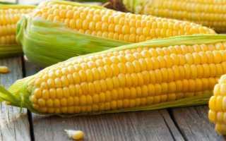 Кукуруза: польза и вред для здоровья