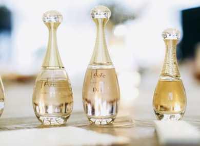 Основные ароматы женских духов Жадор и их описание с отзывами
