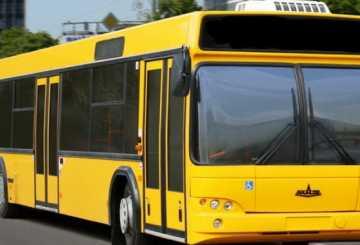К чему снится автобус: трактуем значение сна