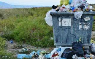 К чему снится мусор: сонник