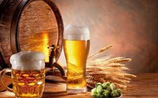 Пиво: свойства, польза и вред для организма