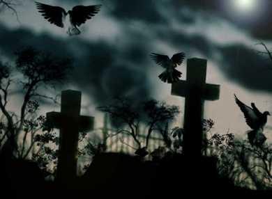 К чему снится кладбище: сонник