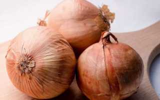 Лук репчатый: свойства, польза и вред для организма