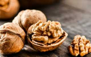 Грецкий орех: польза и вред для здоровья