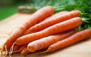 Калорийность моркови: сырой, вареной, по-корейски