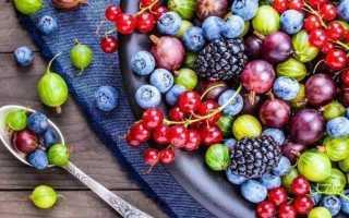 К чему снятся ягоды: сонник
