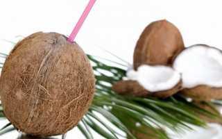 Кокос: польза и вред для организма