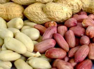 Арахис: калорийность, польза, рецепты