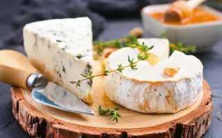 Сыр с плесенью: польза и вред для здоровья