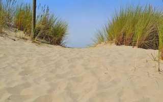 К чему снится песок: сонник
