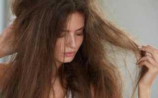 Маска для сухих волос – рецепты, отзывы и фото