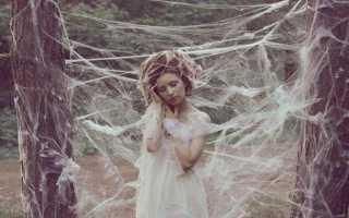 К чему снится паутина: сонник