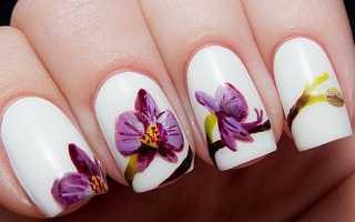 Самый красивый дизайн для ногтей с видео и фото