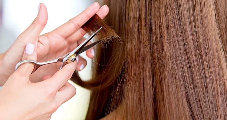 важно также вовремя состригать сухие кончики волос.
