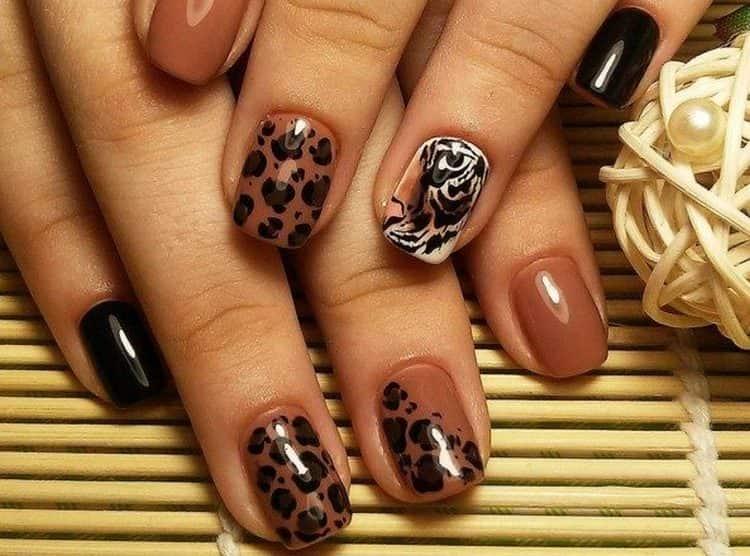 Тигровые узоры очень красиво смотрятся на коричневом фоне.