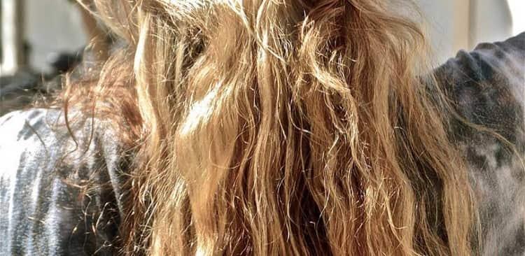 Особенно актуальными подобные процедуры становятся после отдыха на море, когда волосы поддавались постоянному влиянию солнца.
