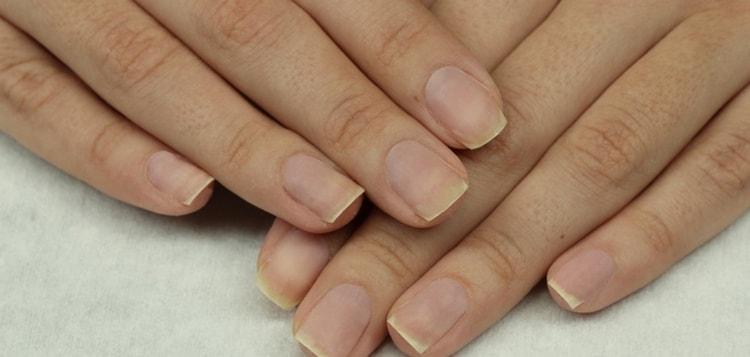 Для начала делаем обрезной маникюр, приводим ногти в порядок.