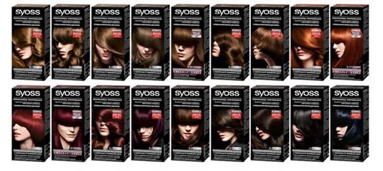 Основные возможности краски Syoss (Сьес)