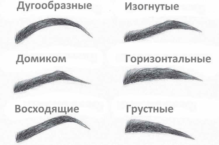 Характеристика форм бровей