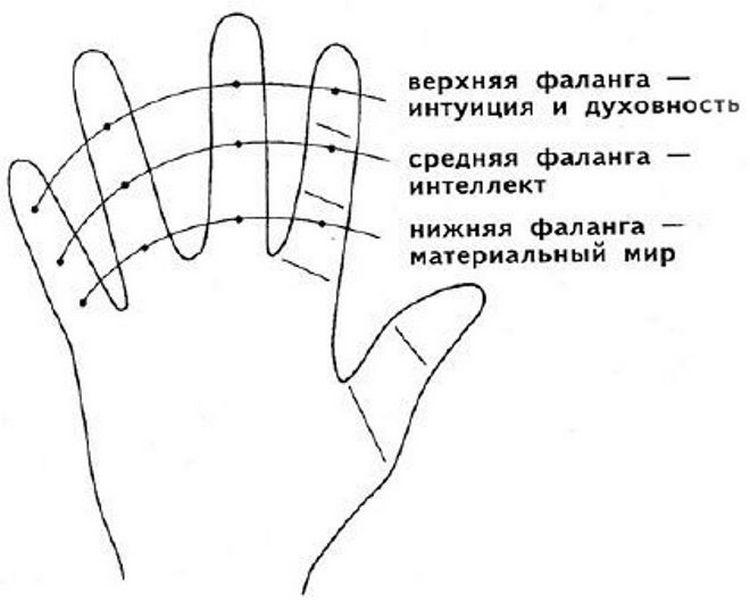 каждая фаланга пальцев имеет свое значение.