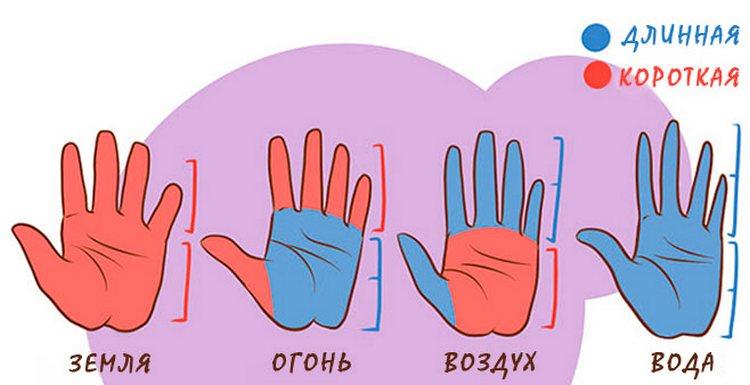 при чтении ладони нужно читывать и соотношение длины пальцев и самой ладони.