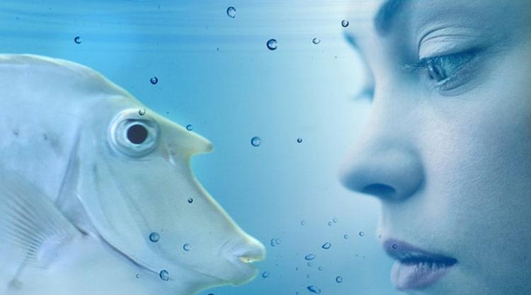 к чему снится большая рыба по соннику Фрейда