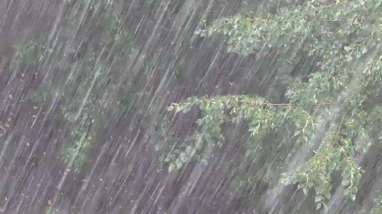 По соннику дождь и ливень имеют разные значения.