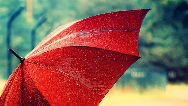 Узнайте, к чему снится зонт от дождя.
