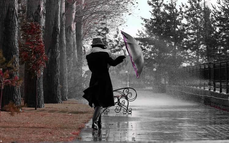 По соннику Миллера дождь может иметь разное значение.