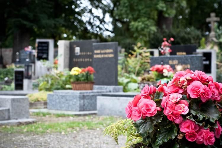 Такой сон может также означать и необходимость проведать могилу родственника.