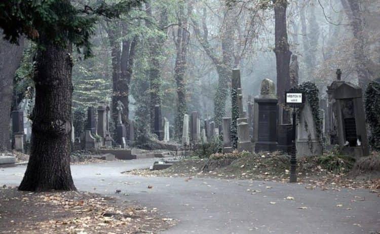 Узнайте также, к чему снится памятник на кладбище.