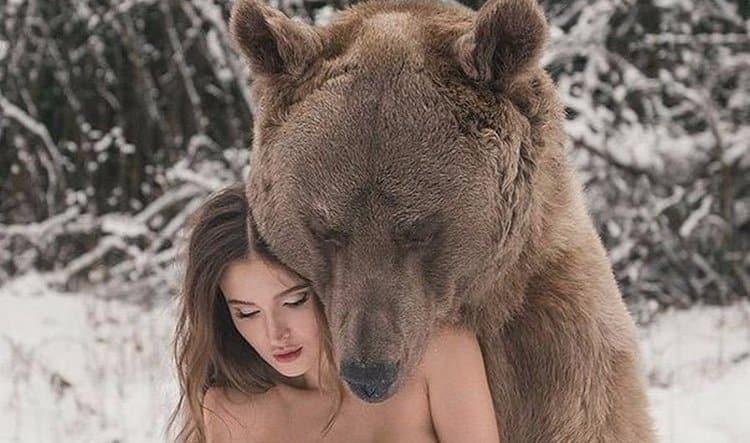 Узнайте, к чему снится медведь женщине замужней.