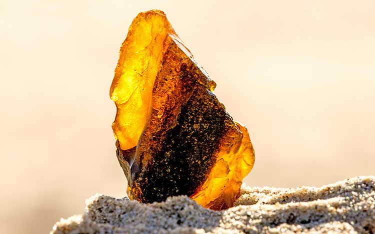 янтарь камень свойства кому подходит по знаку
