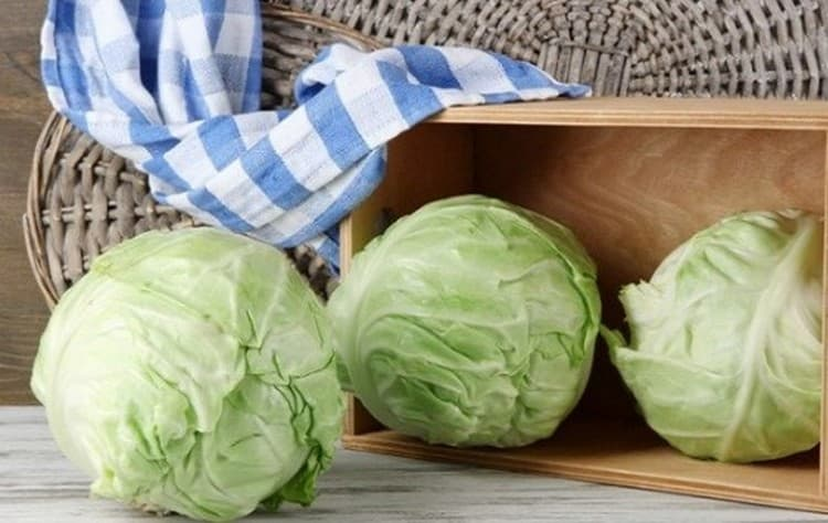 Узнайте, к чему снится покупать капусту.