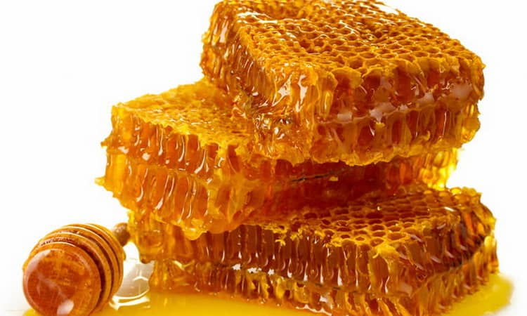 Мед в сотах во сне к чему снится