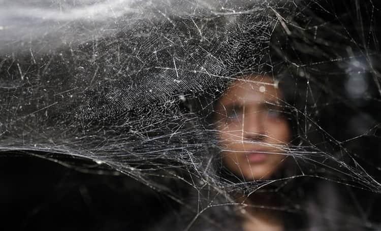 Узнайте, к чему снится убирать паутину.