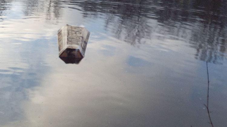 Узнайте, к чему снится мутная вода в реке.