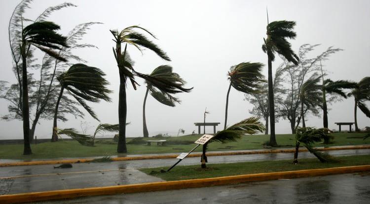 Если приснился ураган, важно обратить внимание на то, зацепил он лично вас или прошел стороной.