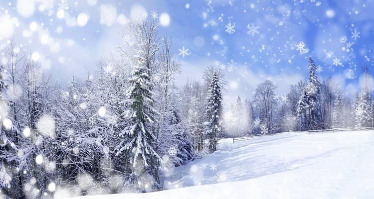 К чему приснилась зима