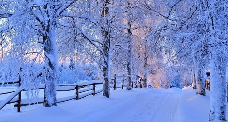 Приснилась зима и снег осенью