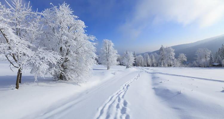 видеть во сне зиму