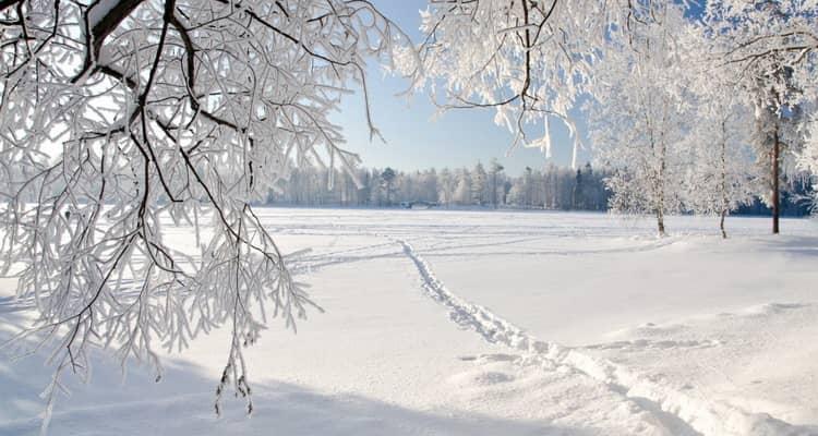 во сне приснилась Зима