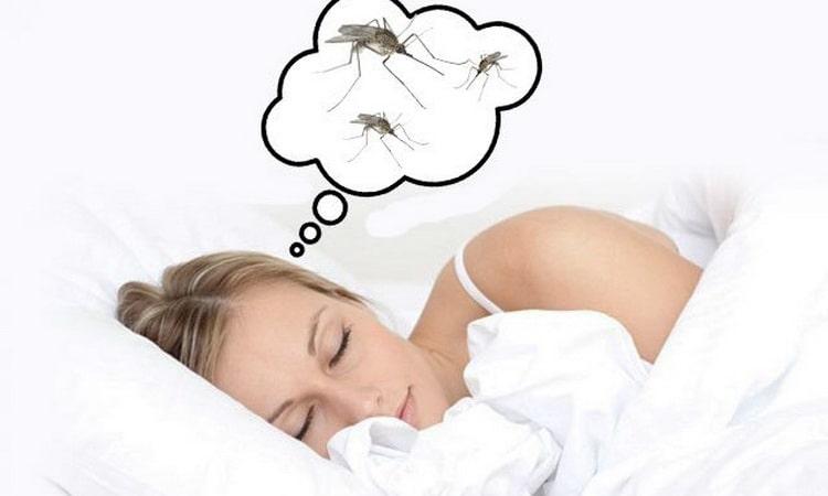 К чему комары во сне