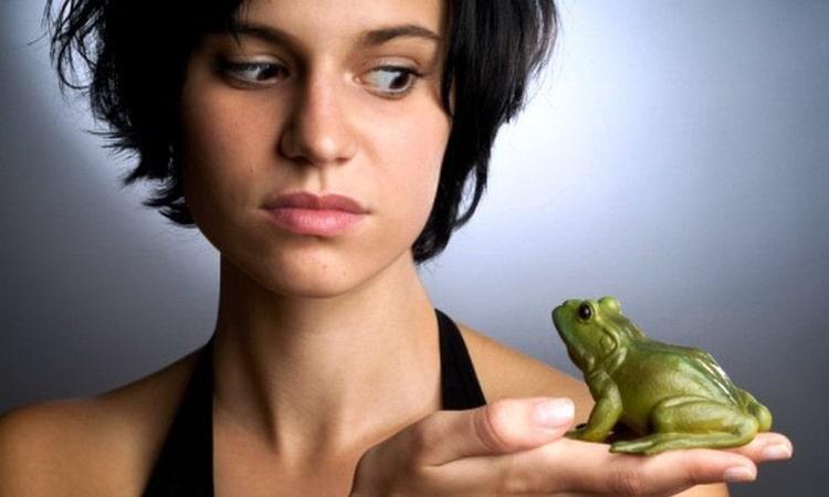 к чему снятся жабы и лягушки по соннике фрейда
